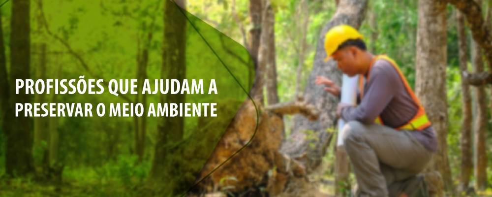 9 profissões ligadas à preservação do meio ambiente