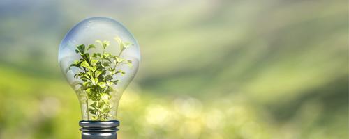 Sustentabilidade e responsabilidade socioambiental