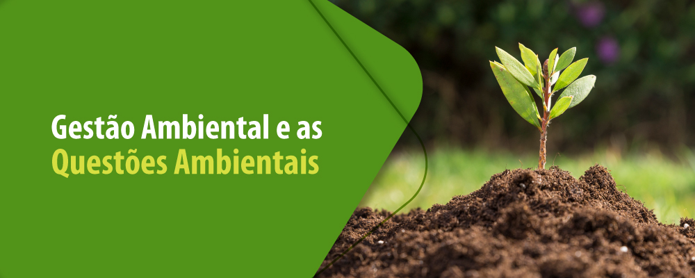A importância da Gestão Ambiental para a preservação do meio ambiente