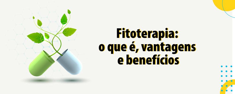 Fitoterapia: o que é, vantagens e benefícios e precauções quanto ao uso