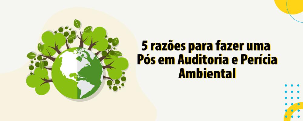 5 razões para fazer uma pós EAD em Auditoria e Perícia Ambiental